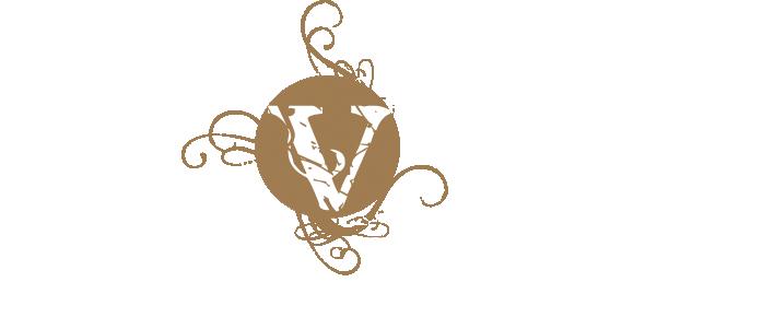 Varidance Logo